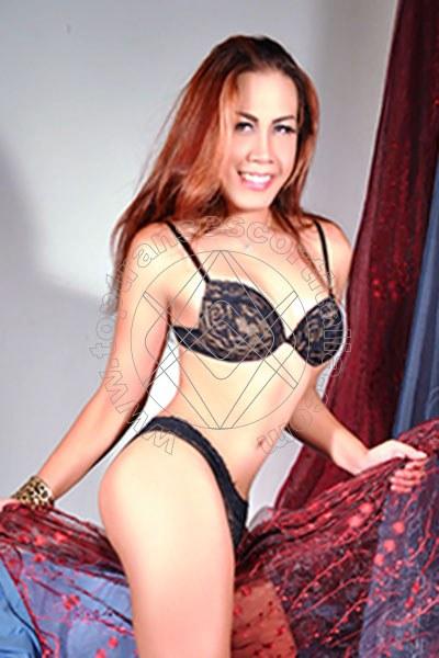 Solenn Ladyboy Trans Asiatica VERONA 3802390861